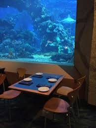 underwater restaurant disney world. If You Have Dined At This Restaurant, Please Leave Your Opinion In The Comments Section! Underwater Restaurant Disney World T