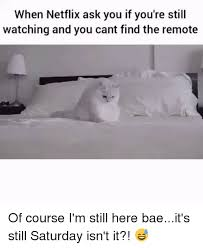 watching netflix with bae. bae, funny, and netflix: when netflix ask you if you\u0027re still watching with bae n