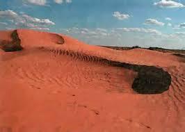 Зона пустынь Экология Реферат доклад сообщение кратко  Рис 211 Бархан