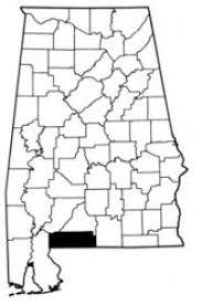 Felicia Bishop - Staff Directory - Alabama Cooperative Extension System -  ACES.edu