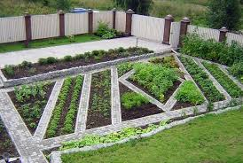 Small Picture Vegetable Garden Design Ideas erikhanseninfo