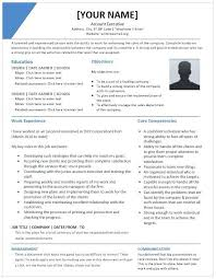 Executive Resume Templates Word New Executive Resume Template Word 28 Gahospital Pricecheck