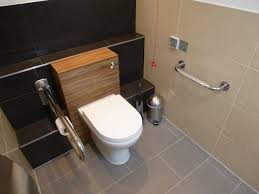 Homey Idea Disabled Bathroom Design  Handicap Bathroom - Handicap bathroom