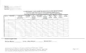 Daily Blood Glucose Log Sheet   Nfcnbarroom.com