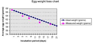 Poultry Incubation Chart Humidity In Incubation