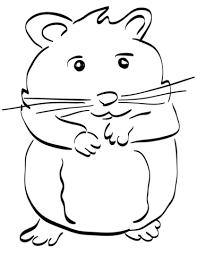 Hamster Kleurplaat Gratis Kleurplaten Printen