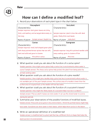 How Can I Define A Modified Leaf