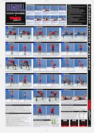 Exercise Wall Chart Free Download 77 Bright Gym Workout Chart Hd Images Pdf