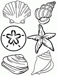 Small Picture Under The Sea Coloring Pages Free Coloring Pages For Kids