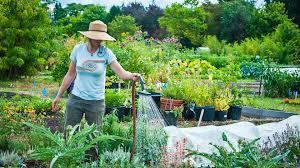 Master Gardener Online