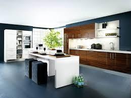 Kitchen Cabinets Design Tool Kitchen Cabinet Design Tool Kitchen Custom Cabinets Decor Modern
