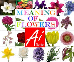 types of flowers with names and meanings. types of flowers with names and meanings a