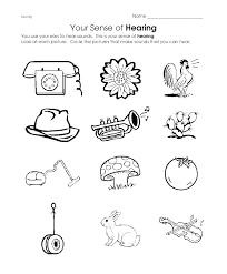 Five Senses Preschool Worksheets Free Printable For Download ...