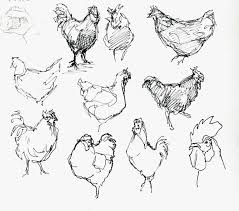 1600x1408 suburban sketches exercise the french hen