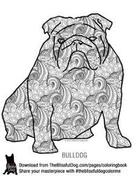 Small Picture bulldog coloring pages bulldog for coloring book Peggy605