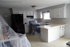 Ardex Feather Finish Countertops Our Experience With Ardex Concrete Counters