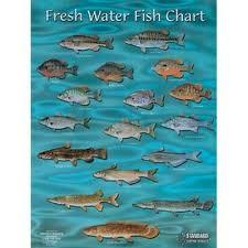 Freshwater Fish Chart Standard Map Standard Fish Chart Gulf Of Mexico Md Fc001