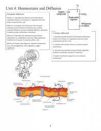 Active Vs Passive Transport Venn Diagram Unit 4 Homeostasis And Diffusion The Human Body Pinterest Diagram