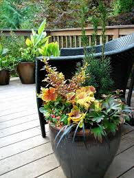 Small Picture 1924 best CONTAINER GARDEN INSPIRATION images on Pinterest Pots