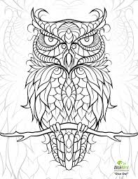 Dicebird Dice Owl Coloring Page Pattern Owls