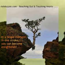 Enlightenment Quotes Magnificent What Is Enlightenment Inspirational Quotes Pictures