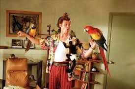 ten outrageously transphobic moments in films and tv jim carrey in ace ventura pet detective 1994 warner bros imdb