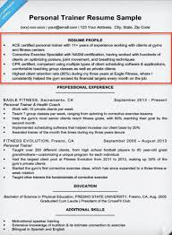 Profile Example Resume Resume Profile Examples Writing Guide Resume Companion