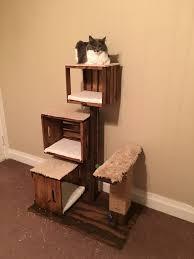 cat playground diy