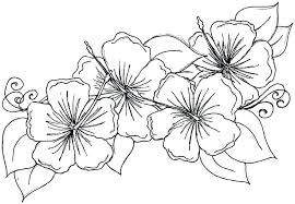 Flower Garden Coloring Pages For Adults Simple Free Lotus Mandala