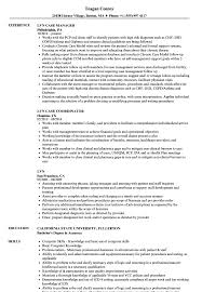 Lvn Resumes Resume Work Template