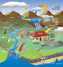 living with the trinity lesson plan   the natural water cycle and    living   the trinity lesson plan   the natural water cycle and the urban water cycle