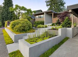 View in gallery An abundance of textured plant life in a modern yard