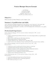 It Manager Resume Enchanting Product Manager Resume Objective Statement Management Samples Free