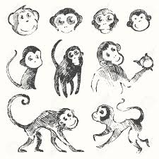 面白いかわいいサル猿年干支シンボル ベクトル イラスト手描きのスケッチのセット
