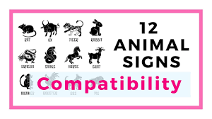 Chinese Animal Compatibility Chart 12 Chinese Animal Signs And Their Compatibility Trinity Combination Allies And Conflicting Sign