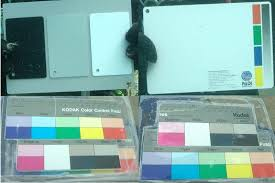 Four Underwater Color Charts Were Used For Spectral And