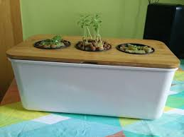 hydroponic herb garden. Picture Of Windowsill Hydroponic Herb Garden