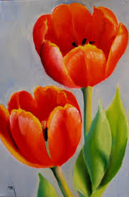 red tulips na