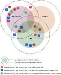 Central Nervous System Vs Peripheral Nervous System Venn Diagram Venn Diagram For 22 Patients Showing Virological Evidence Of Cns Or
