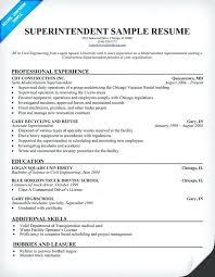 Technical Recruiter Resume Sample Topshoppingnetwork Com