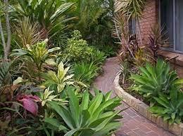 low maintenance garden a reality abc