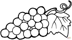 Coloriage Raisins 15 Coloriages Imprimer Gratuits
