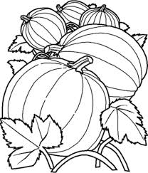 printable pumpkin coloring pages giant printable kids colouring for brilliant benefits mandala coloring adults printable coloring pages archives zenfulcolor adult coloring books on benefits of adult coloring