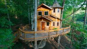 basic tree house pictures. Decoration: Simple Treehouse Plans Platform Tree Fort Ideas From Build Your Own Basic House Pictures