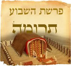 Image result for תרומה