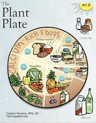 The Plant Plate The Vegan Rd