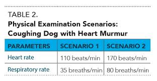 Right Vs Left Sided Heart Failure Chart Heart Failure In Dogs 6 Practical Tips From Cardiologists