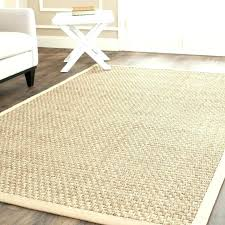 pottery barn rug with leather border sisal linen reviews canada