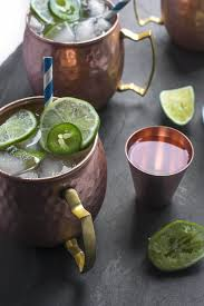 gin and ginger beer moscow mule the