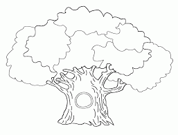 Small Picture Bare Tree Coloring Pages Coloring Home